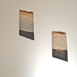 singed ash, calico, 2013. 00cm x 00cm